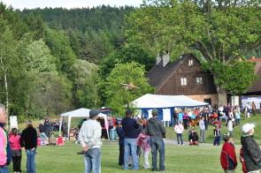 Mistrovství Havlovic v sečení trávy kosou